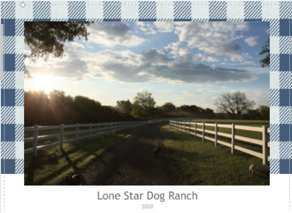 Lone Star Dog Ranch Calendar 2020 Dog Ranch Rescue